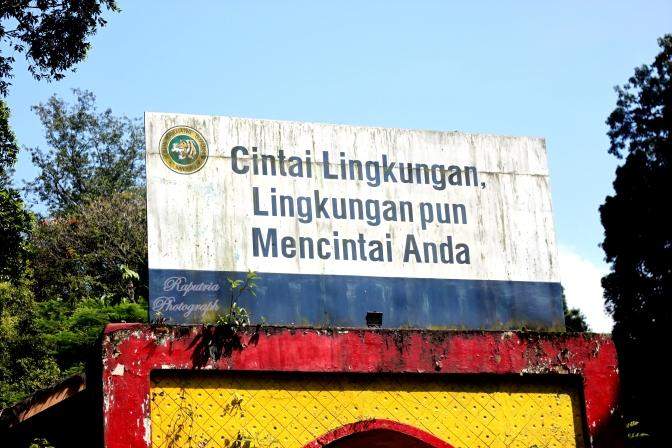 The Bandung Zoo #day6